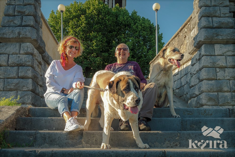 Das Ehepaar mit den Hunden