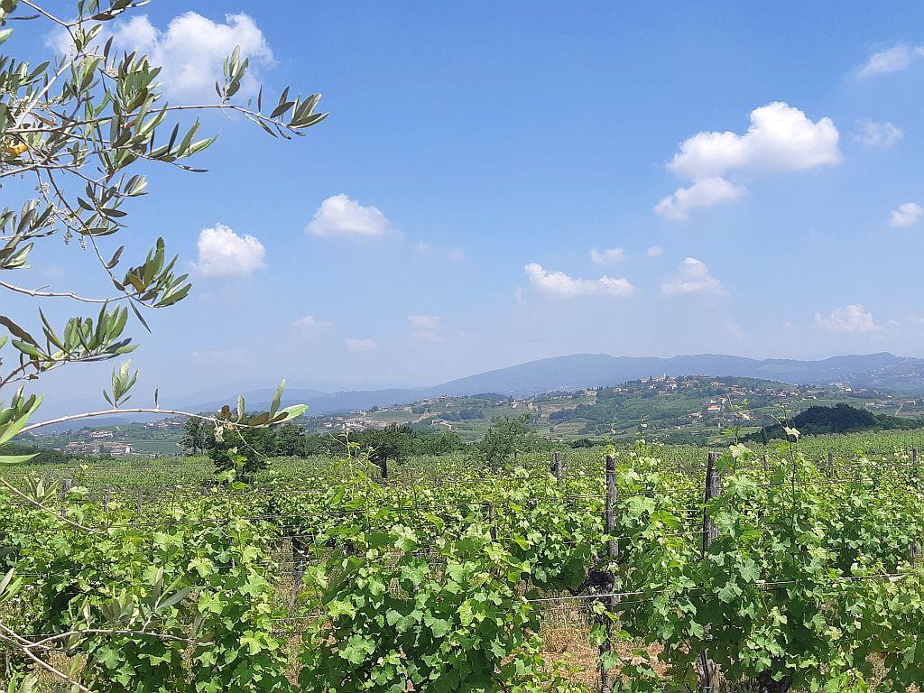 Blick auf San Floriano